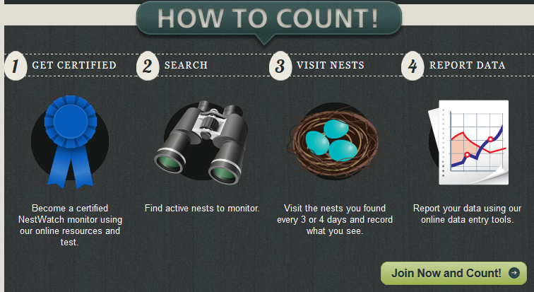 Nestwatch_howto